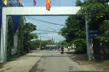 Bán đất thôn Nội Phật, Mai Đình, Sóc Sơn