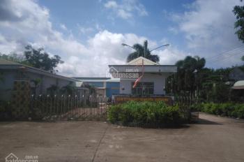 Cho thuê nhà kho nhà xưởng xã Tiến Hưng - Đồng Xoài - Bình Phước