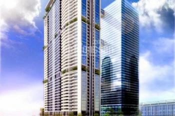 Cho thuê văn phòng tòa nhà Discovery, Cầu Giấy DT 80m2, 200m2, 1000m2 giá thuê 300 nghìn/m2/th