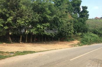 Bán gấp 3ha đất ở, làm resort nghỉ dưỡng, homestay, khu du lịch, tại Yên Bài, Ba Vì, Hà Nội