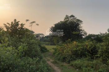 Cần bán 7 sào đất tại Cổ Đông, Sơn Tây, Hà Nội. Đất đẹp vị trí thuận lợi. LH 0906299161