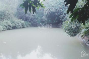 Cần bán gấp lô đất 8000m2 view đẹp, xã Cư Yên