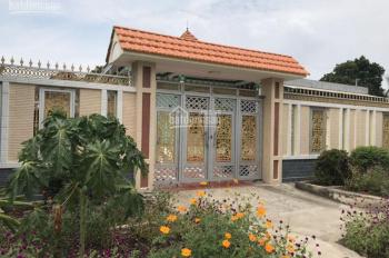 Đất chính chủ, SHR, cần tiền nên bán, lô biệt thự Phú Đông, 1241m2, giá chỉ 3,7tr/m2