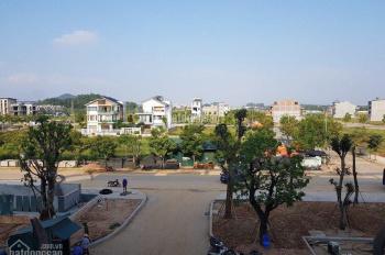 Bán đất khu đô thị Nam Vĩnh Yên: 0988.781.856
