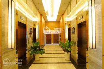 Cho thuê căn hộ chung cư cao cấp Dragond Hill đường Nguyễn Hữu Thọ sát Q7, 2PN, 2WC giá 11tr full