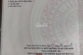 Biệt thự vườn mặt tiền Tỉnh Lộ 7, xã Trung Lập Hạ, Củ Chi. Giá 10 tỷ 500tr thương lượng