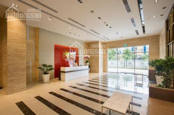 Bán lô văn phòng The Prince Residence Nguyễn Văn Trỗi, 17.5m2, đang cho thuê 11tr, sổ hồng, 1.6 tỷ