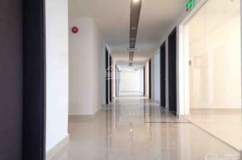 Cho thuê văn phòng cao ốc Newton Residence Đ.Trương Quốc Dung, Nguyễn Trọng Tuyển, 52.4m2, 22tr/th