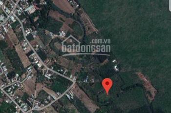 Bán 1,7ha cao su xã An Viễn huyện Trảng Bom Đồng Nai 15 tỷ ( LH 0911.239.358)