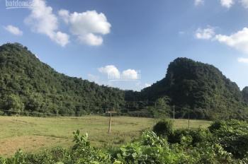Bán gấp lô đất 5ha mặt đường Hồ Chí Minh 200m, thuộc huyện Lương Sơn, tỉnh Hoà Bình