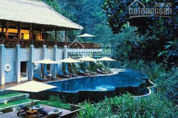 Mở bán cắt lô BT Forest Villa tại Flamingo Đại Lải Resort, DT 500m2, tiến độ đóng tiền 2 năm