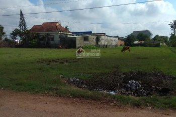 Cho thuê đất xây kho, làm nhà xưởng tại Trảng Bàng, Tây Ninh