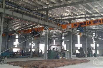 Công ty Hoàng Hà cho thuê kho xưởng DT: 1000m2, 3000m2 tại CCN Phùng, Đan Phượng