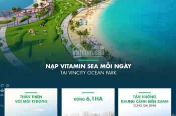 Căn hộ 2 phòng ngủ Đông Nam view hồ điều hòa dự án Vinhomes Ocean Park, hotline 0946928689