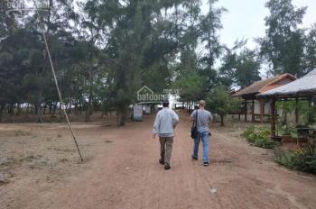 Bán đất xây biệt thự nghỉ dưỡng ở Bình Châu, sát biển