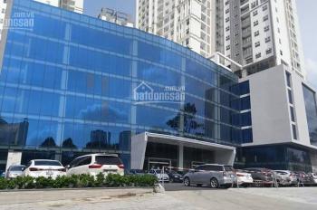 Cần cho thuê nhiều CHCC Xi Grand Court Q10, nhà mới 100% - 1PN - 3PN cơ bản hoặc full nội thất