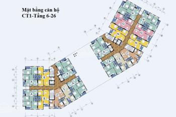 Cần bán gấp căn hộ 08A tòa CT1 - dự án khu nhà ở Thạch Bàn, Long Biên, Hà Nội, 0967707876