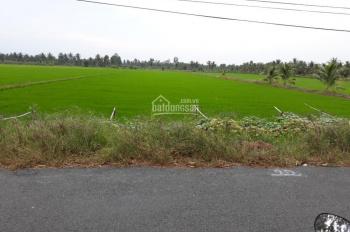 Chính chủ cần bán 13 công đất ruộng 2,6 tỷ MT đường vào xã Sơn Bình, Hòn Đất KG. Hân 0909802388