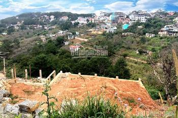 Cho thuê đất diện tích rộng, view thiên nhiên thoáng mát đường Khe Sanh, Đà Lạt