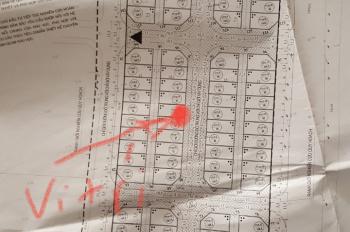 Bán biệt thự, shophouse Thuận An Trâu Quỳ, Gia Lâm, biệt thự khu 31ha Trâu Quỳ, 48tr/m2