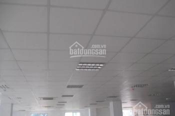 Cho thuê văn phòng quận Đống Đa, Ô Chợ Dừa, 45m2, 80m2, 130m2, 450m2, 700m2, giá 120.000/m2/th