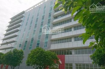 Cho thuê VP 500m2/ 112 triệu, QTSC building công viên Phần mềm Quang Trung. LH 0906 391 898