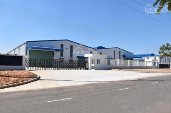 Cho thuê kho xưởng tiêu chuẩn 1500m2 - 7700m2 tại KCN Thạch Thất, Quốc Oai, Hà Nội. LH 0962463030