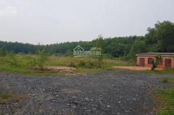 Bán đất chính chủ gần chợ Phú An, đất cao ráo, sổ hồng riêng, LH 0888334481