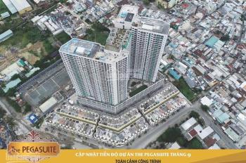 Cho thuê căn nhà phố PegaSuite, DT 75.50m2, 1 trệt 4 lầu giá 25tr/th, thương lượng, LH 0924561401
