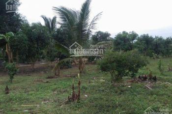 Bán trang trại nghỉ dưỡng tại Hòa Phước, Đà Nẵng, diện tích lớn 22.000m2