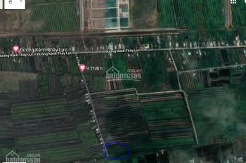 Bán đất giao khoán nông trường Tân Lập
