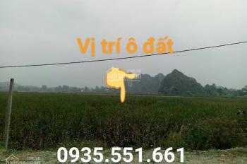 Bán đất dự án đầm con rùa Hoàng Tân, Quảng Yên, DT 300m2, MT 12m, chỉ 2,8tr/m2