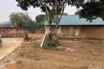 Bán 9 sào 3200m2 đất trang trại nhà vườn xã Cổ Đông, Sơn Tây, Hà Nội, giá rẻ