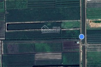 Bán đất cụm khu công nghiệp Thạnh Tân, Tiền Giang - DT 5.3 ha - giá cực tốt - LH 0904307788