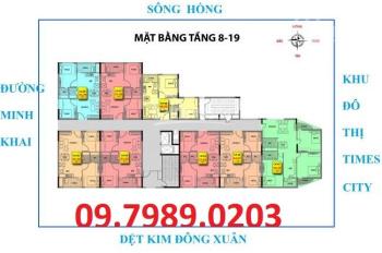 Bán căn hộ 536A Minh Khai 55m2- 75m2 giá tốt nhất