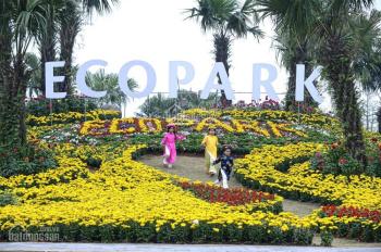 Bán nhà phố Ecopark TP Hải Dương, 85m2-142m2, vị trí đẹp giá tốt. LH: 0969648158