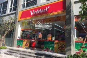 Bán shophouse Vinhomes Central Park, giá tốt nhất CĐT 25 - 35 tỷ/căn 1 trệt, 1 lầu, call 0977771919