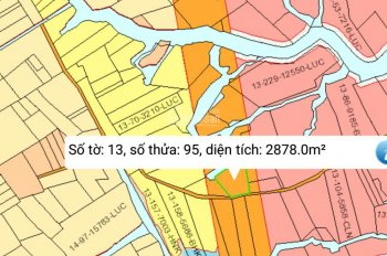 Mua đất đường Cát Lái xã Phước Khánh. Đoán đầu giá rẻ. 600tr/2878m2