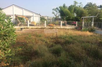 Cho thuê đất tại Thị Trấn Hòa Thành, Tây Ninh