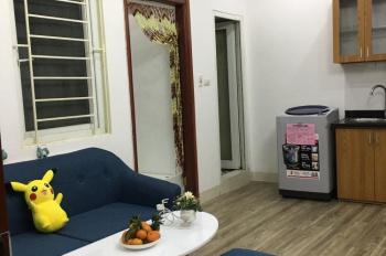 Chính chủ cần bán căn hộ chung cư mini mới nhận nhà. LH 0868069933