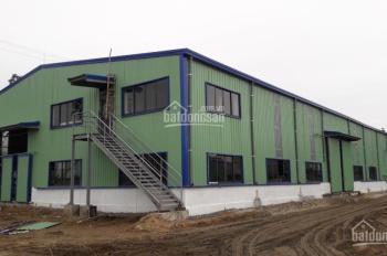 Cho thuê 1800-3600-5400m2 kho xưởng mới tại Bình Giang, Hải Dương