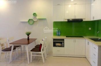 Cần bán căn hộ chung cư SG Town, Q. Tân Phú, 60m2 gồm 2 phòng ngủ, phòng khách, bếp, 2 toilet