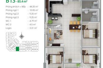 Chính chủ cần bán 2 căn hộ liền kề 85.4m2, 3PN 2WC và 46m2 1PN 1 WC 8x Đầm Sen - Hưng Thịnh