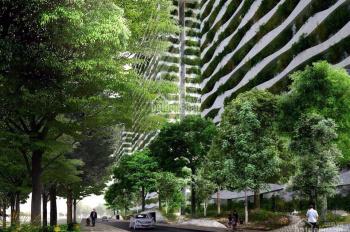 Chính chủ cần bán căn hộ sát Quận 1, Diamond Lotus Riverside 3PN, 2WC DT 91,68m2 giá 3,74 tỷ