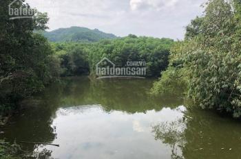 Nhượng QSD 2ha đất mặt hồ Yên Bình, Thạch Thất, giá 700 nghìn/m2