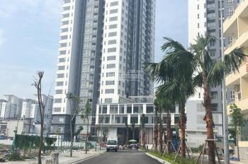 Cần cho thuê nhiều căn hộ Hưng Phát Silver Star, Nguyễn Hữu Thọ, giá từ 7-12tr/th, nội thất cao cấp