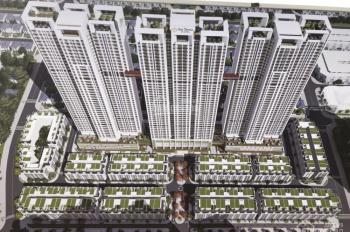Mở bán liền kề, shophouse dự án Terra Văn Phú, khu đô thị An Hưng, LH 0981229686