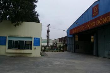 Cho thuê nhà xưởng chính chủ 2000,3000,4000,5000, 7000m2 trên QL5 và tại Khu Bến Hàn, Hải Dương