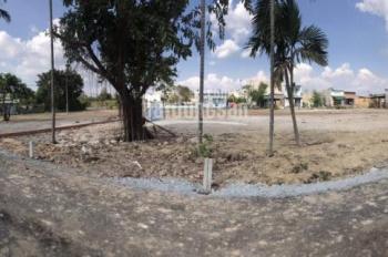 Bán đất tại xã Tân Thông Hội xây dựng tự do, sổ riêng từng nền, cách trung tâm Củ Chi 3Km