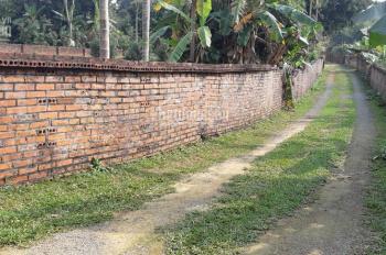 Bán đất hai đường, tiện làm nhà xưởng diện tích 850m2 tại Tiến Xuân, Thạch Thất